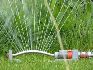 Content syndication like a sprinkler.