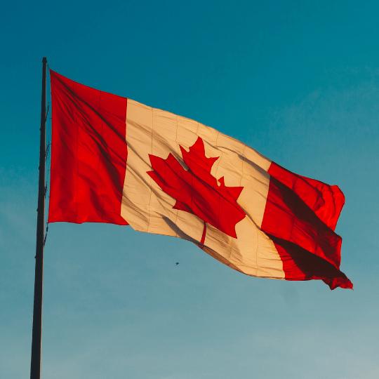 Canadian social media