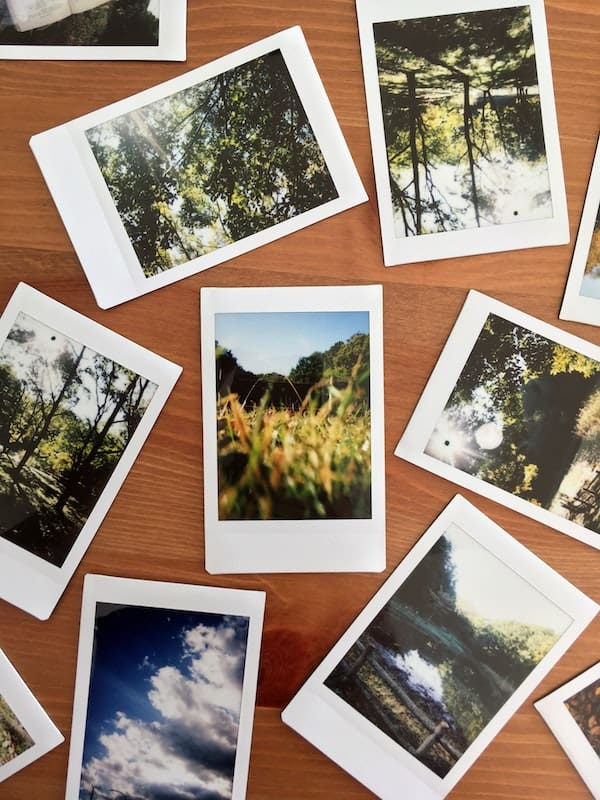 Polaroid photographs of nature scenes displayed on table