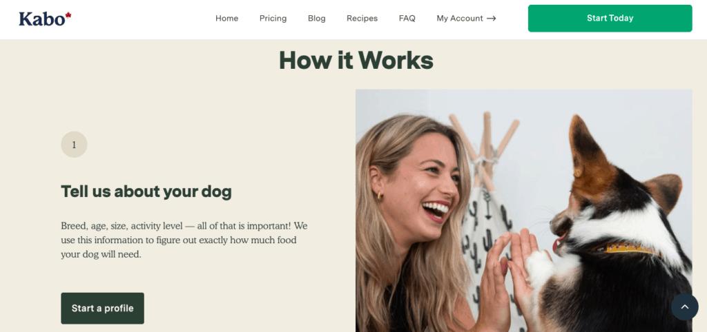 Kabo home page quiz